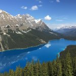 Peyto Lake from Main Lookout