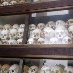 skulls from the deceased