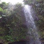 Foto de Treasure Tours St. Lucia