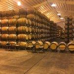 Photo of Caymus Vineyards