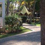 Photo de ClubHotel Riu Merengue