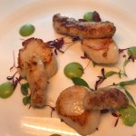 Scallops and cod tongues 👅with pea purée BEAUTIFUL