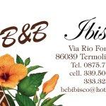Photo of B&B Ibisco