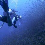 Photo of Easy Divers - Koh Tao