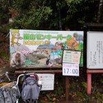 Monkey Park Signs