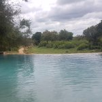 Garonga Safari Camp Bild