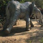 White Elephant Foto