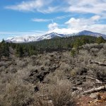 Beautiful view of Mt. Humphreys along with some of the volcanic landscape and surrounding forest