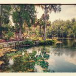 Silver Springs State Park Foto