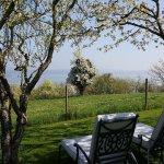 Hotel Hirschen - unser Inselgarten mit Blick auf Insel Reichenau, Liebesinsel, Halbinsel Mettnau