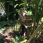 Foto de Tropical Spice Garden