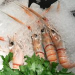 Prawns in Ice Display