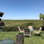 Foto de Eberle Winery