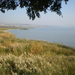 At the shore of the Sea of Galilee