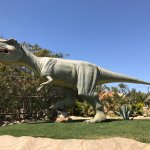 Photo of Dinosauria