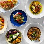 Cibo Trattoria -  authentic Italian cuisine prepared in a traditional manner with ethically sour