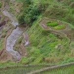 Photo of Hapao Rice Terraces
