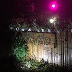 Foto de Bromelia Nature Lodge Retreat / Healing Center