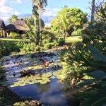 Photo of Royal Tahitien