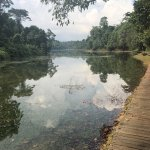Went to Macritchie, for a Kayaking, but end up jogging the whole place,it was nice taking pictur