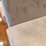 Stains on the sofa cushions