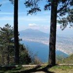 Panorama dal bosco di Monte Faito