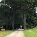 Foto di Castello Banfi - Il Borgo