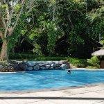 Pool - Pearl Farm Beach Resort Photo