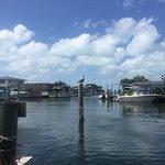Photo de Porky's Bayside - Restaurant and Marina