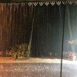 atmospheric tropical downpour