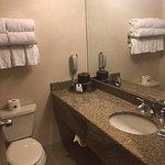 Photo of Ann Arbor Regent Hotel & Suites