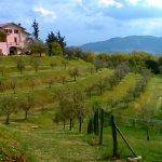 Photo of Agriturismo Val della Pieve