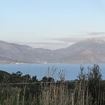 Photo of Tenuta Terre di Bosco