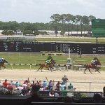 My first horse race ever and my pick won!
