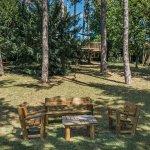 Le jardin : salon sous les pins centenaires et cabane dans les arbres