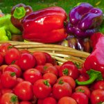 Fresh produce every week at the Hawkes Bay Farmers Market