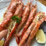 Huge perfectly grilled prawns