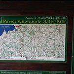 Photo of Sila National Park