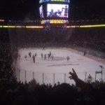 Sabres Goal