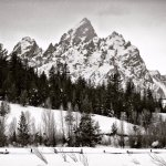 The view of the Tetons from the crosscountry trails in front of the lodge. Photo @robkingwill
