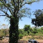 Foto de Hacienda Puerta Del Cielo Eco Spa