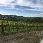 Photo of Urbino Resort - Tenuta Santi Giacomo e Filippo