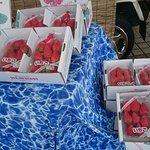 笛吹川フルーツ公園展望台イベント‼ 旬の苺🍓タケノコころ柿、ジュエリー‼ ゴールデンウィーク最終まで 展望台イベント頑張っています 皆様のご来場ご来店お待ち申し上げます‼