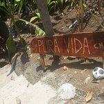 Photo of Pura Vida Hostel - Manuel Antonio