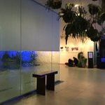 Waterfall in the lobby