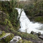 Photo of Janet's Foss