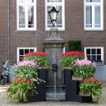 Foto de Amsterdam in World War II Walking Tour