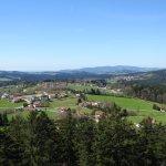 Photo of Baumwipfelpfad