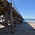 Jetty Beach/Coffs Beach