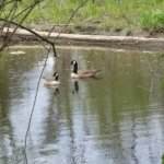 Manokin River Park
